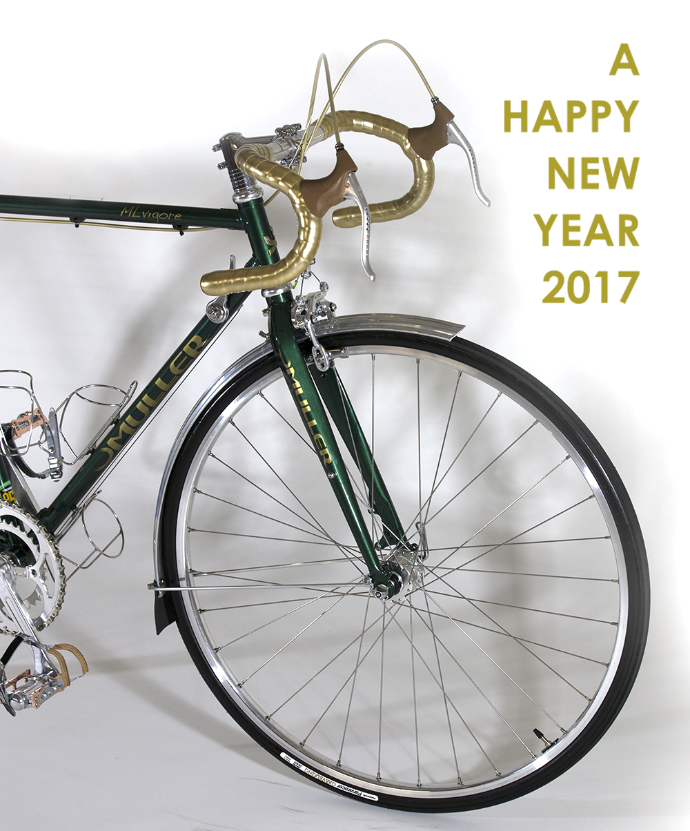 2017mlvigore_front_new-year